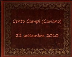 2010 Cento Campi_100